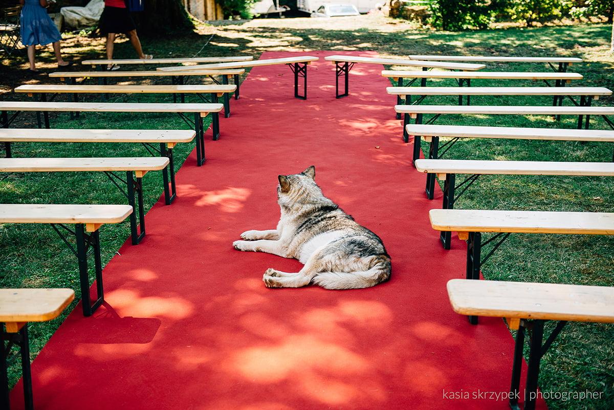 Kasia-Bacq-Destination-Wedding-France-Day-2---Karel-&-Frederik-013