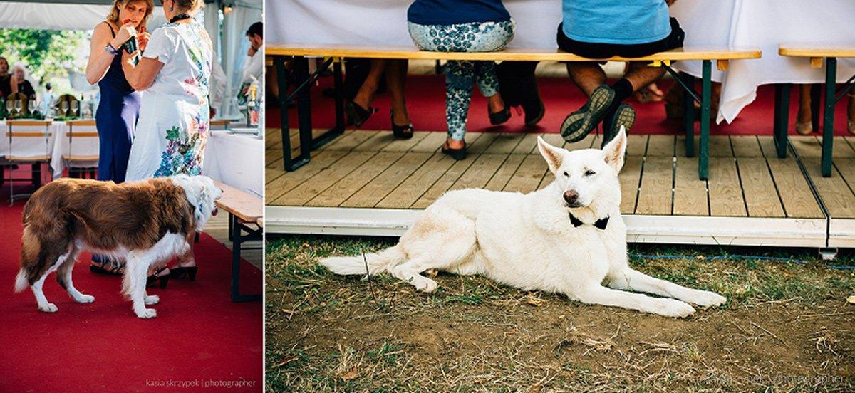 Kasia-Bacq-Destination-Wedding-France-Day-2---Karel-&-Frederik-081