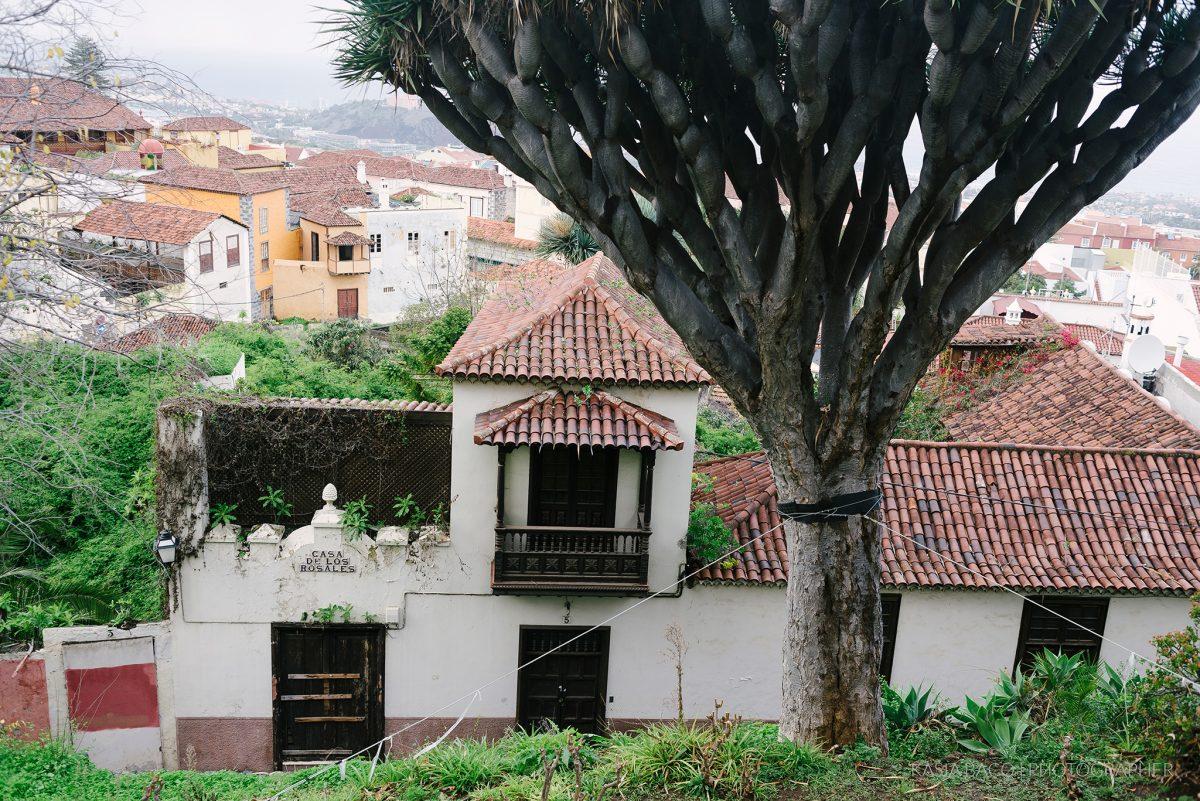 Tenerife Spain Kasia Bacq 15