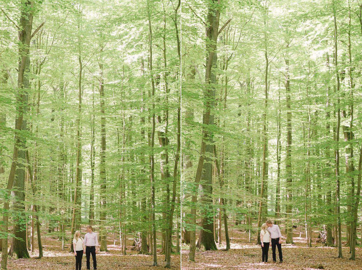 Elke Stijn Forêt de Soignes Brussels Kasia Bacq 011